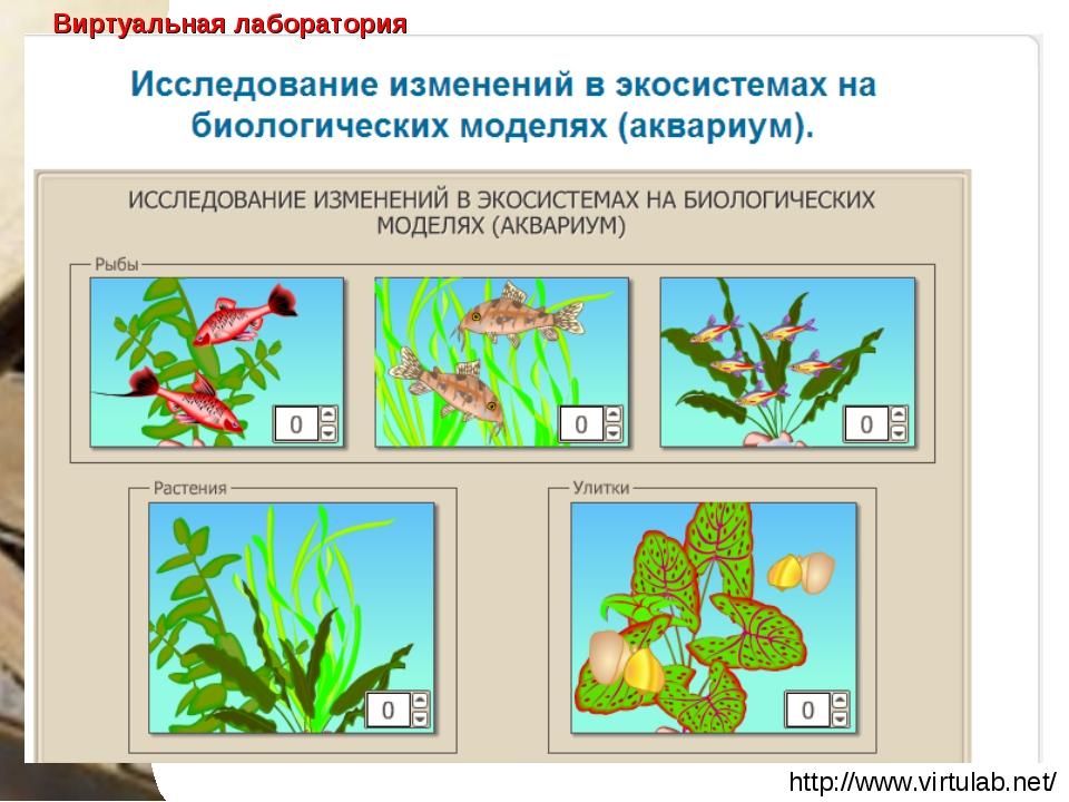 http://www.virtulab.net/ Виртуальная лаборатория