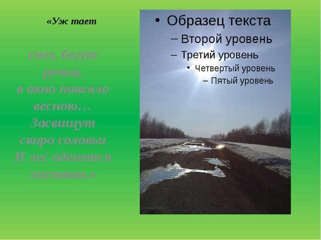 «Уж тает снег, бегут ручьи, в окно повеяло весною… Засвищут скоро соловьи И...