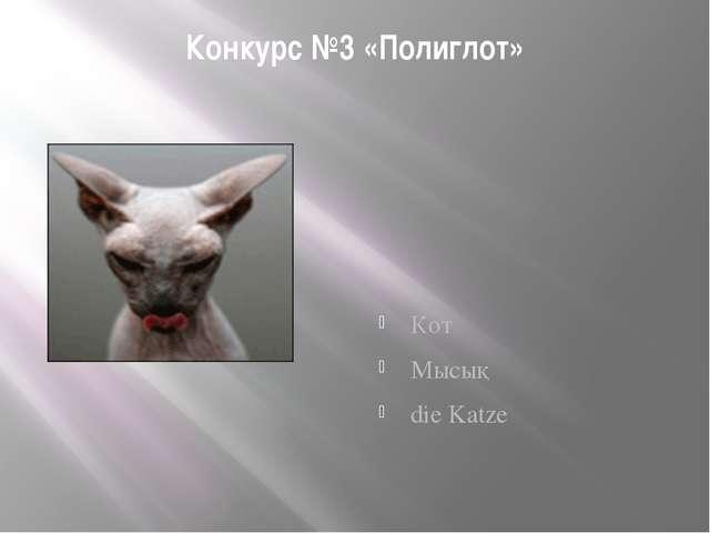Конкурс №3 «Полиглот» Кот Мысық die Katze