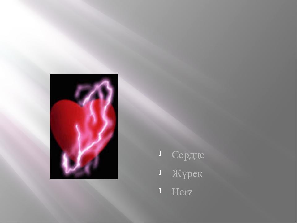Сердце Жүрек Herz