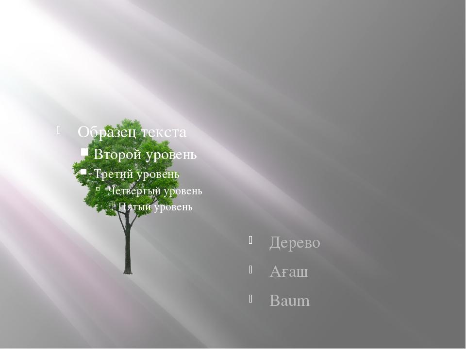 Дерево Ағаш Baum