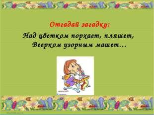 Отгадай загадку: Над цветком порхает, пляшет, Веерком узорным машет…