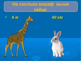 6 м 40 см На сколько жираф выше зайца