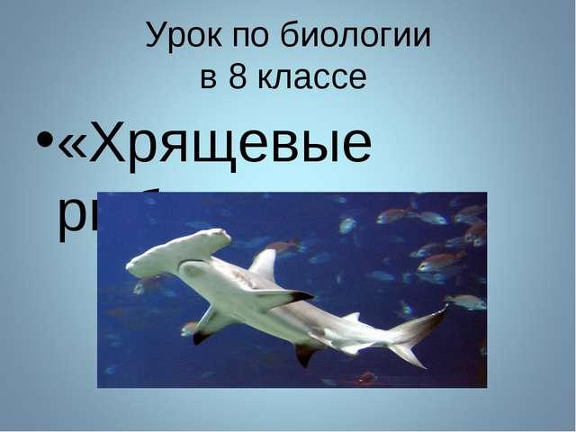 Урок по биологии в 8 классе «Хрящевые рыбы»