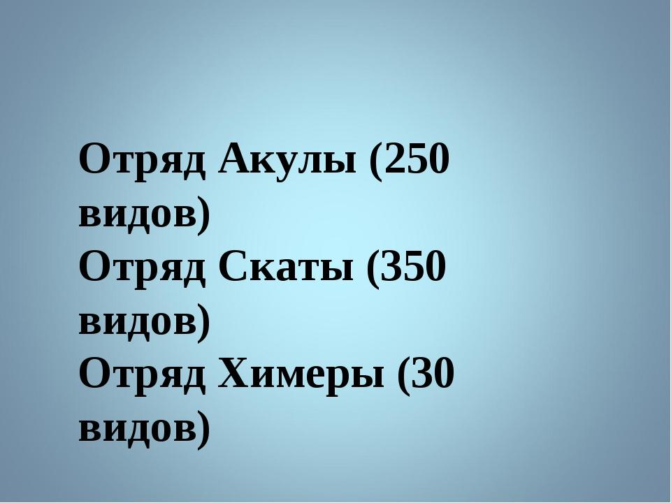 Отряд Акулы (250 видов) Отряд Скаты (350 видов) Отряд Химеры (30 видов)