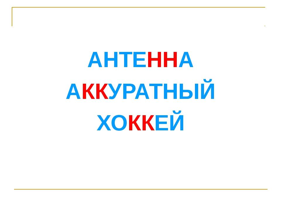 АНТЕННА АККУРАТНЫЙ ХОККЕЙ