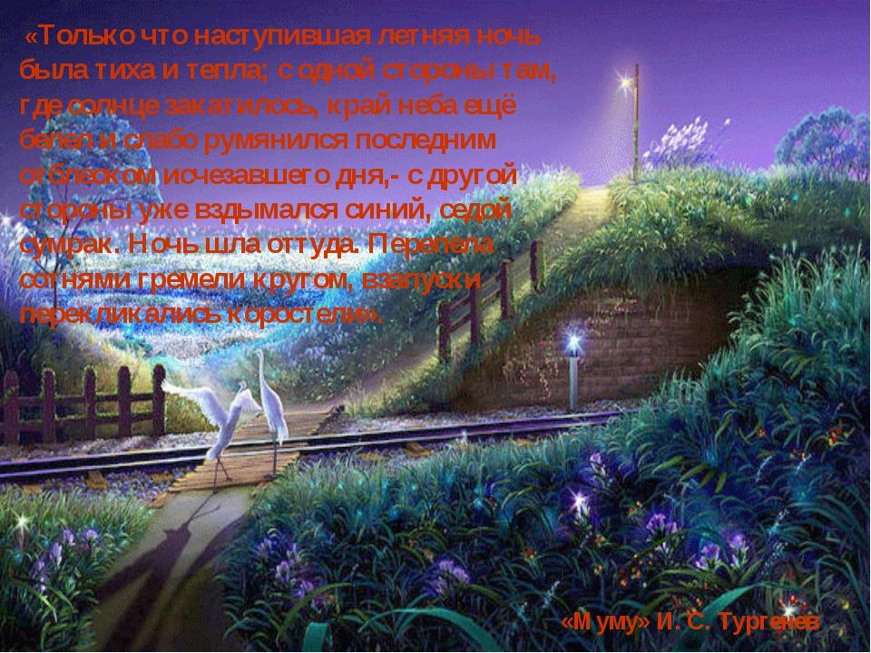 «Только что наступившая летняя ночь была тиха и тепла; с одной стороны там,...