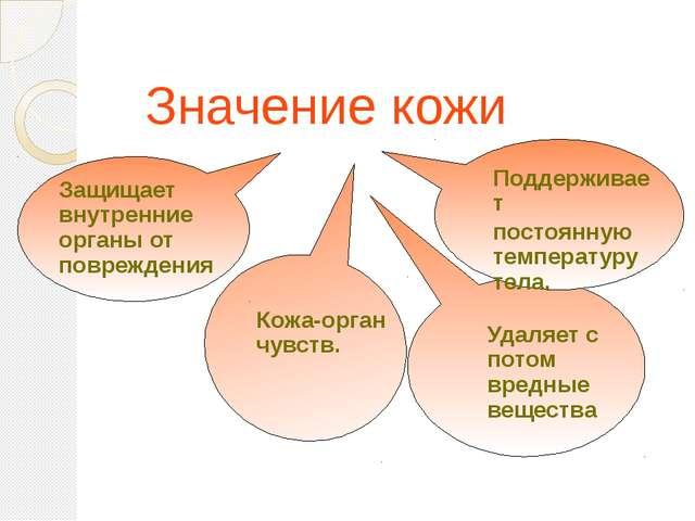 Значение кожи Защищает внутренние органы от повреждения Кожа-орган чувств. П...