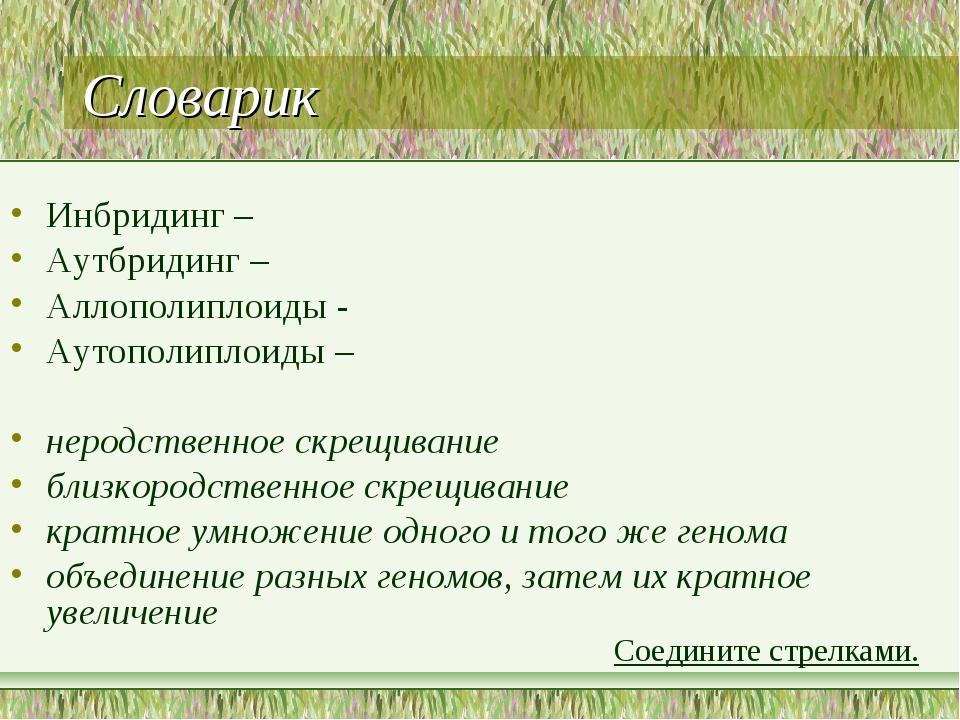 Словарик Инбридинг – Аутбридинг – Аллополиплоиды - Аутополиплоиды – неродстве...