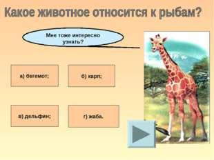 а) бегемот; б) карп; в) дельфин; г) жаба. Мне тоже интересно узнать?