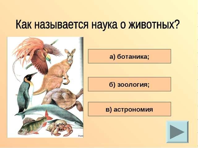 а) ботаника; б) зоология; в) астрономия