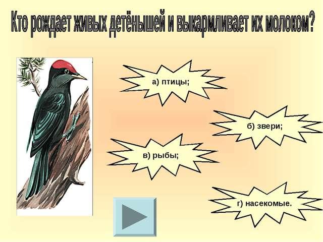 а) птицы; б) звери; в) рыбы; г) насекомые.