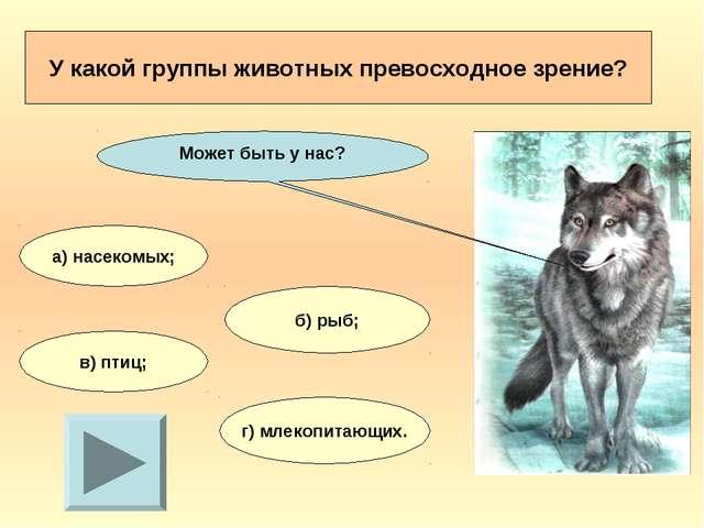 У какой группы животных превосходное зрение? а) насекомых; б) рыб; в) птиц; г...