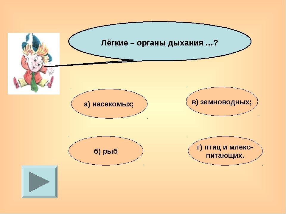 Лёгкие – органы дыхания …? а) насекомых; в) земноводных; б) рыб г) птиц и мл...