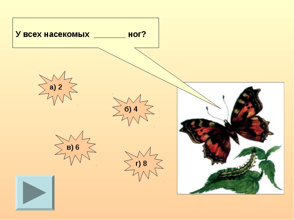 У всех насекомых _______ ног? а) 2 б) 4 в) 6 г) 8