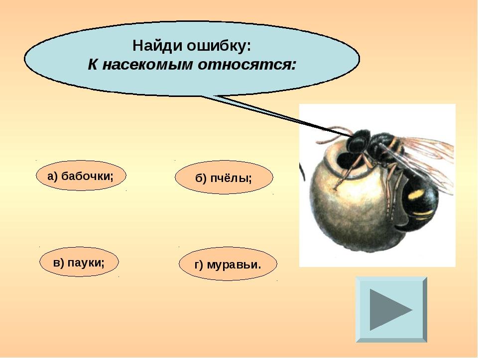Найди ошибку: К насекомым относятся: а) бабочки; в) пауки; б) пчёлы; г) мурав...