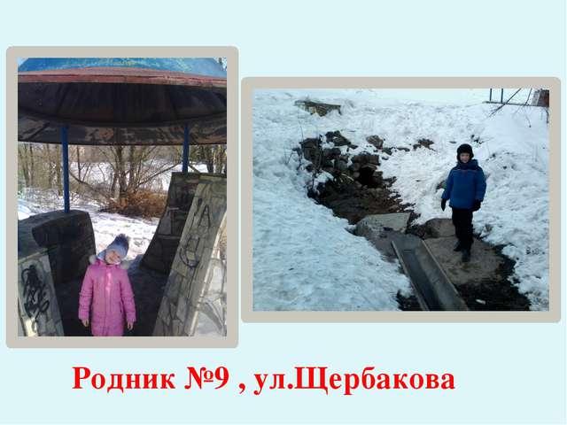 Родник №9 , ул.Щербакова
