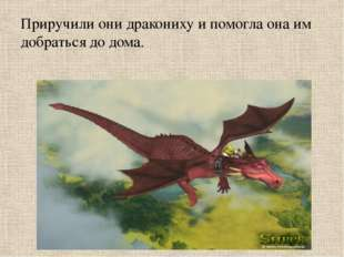 Приручили они дракониху и помогла она им добраться до дома.