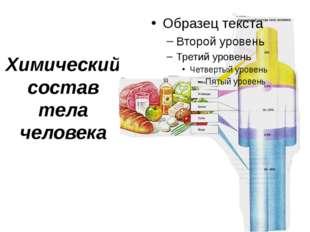 Химический состав тела человека