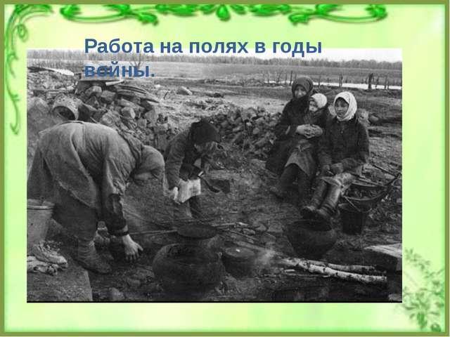 Работа на полях в годы войны.