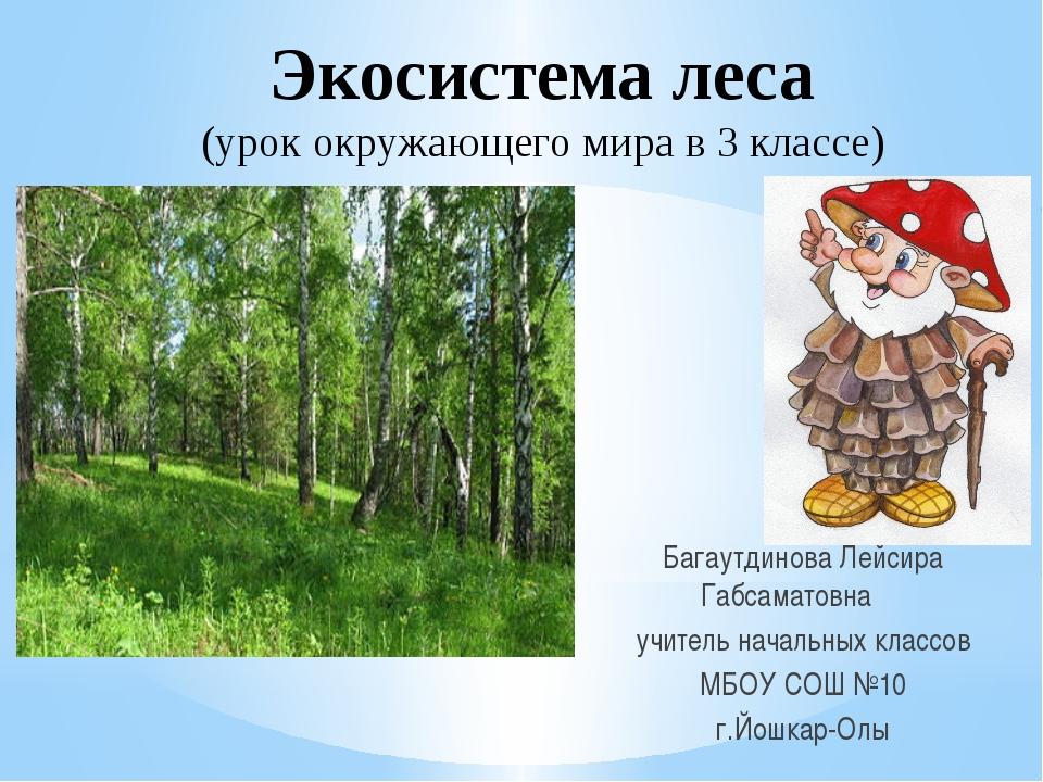 Багаутдинова Лейсира Габсаматовна учитель начальных классов МБОУ СОШ №10 г.Й...