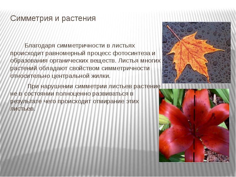 hello_html_m4c32d793.jpg