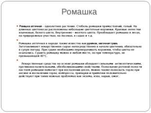 Ромашка Ромашка аптечная – однолетнее растение. Стебель ромашки прямостоячий,