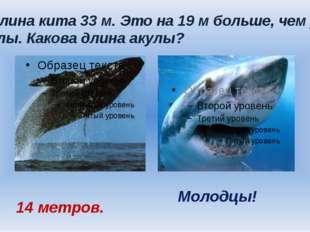 Длина кита 33 м. Это на 19 м больше, чем у акулы. Какова длина акулы? 14 мет