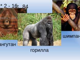 50 * 2 - 16 = 84 горилла орангутан шимпанзе