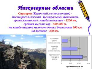 Сарыарка (Казахский мелкосопочник) - место расположения Центральный Казахс