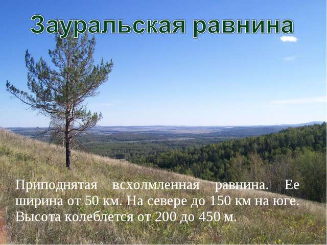 Приподнятая всхолмленная равнина. Ее ширина от 50 км. На севере до 150 км на...