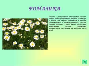 ХМЕЛЬ В официальной медицине хмель используется в нескольких видах: Настой –