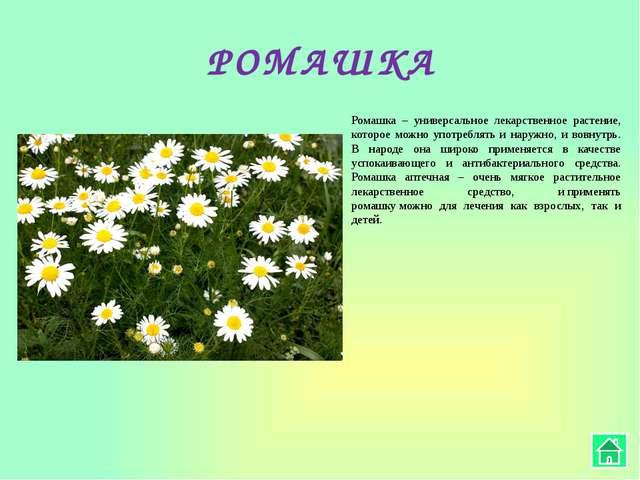 ХМЕЛЬ В официальной медицине хмель используется в нескольких видах: Настой –...
