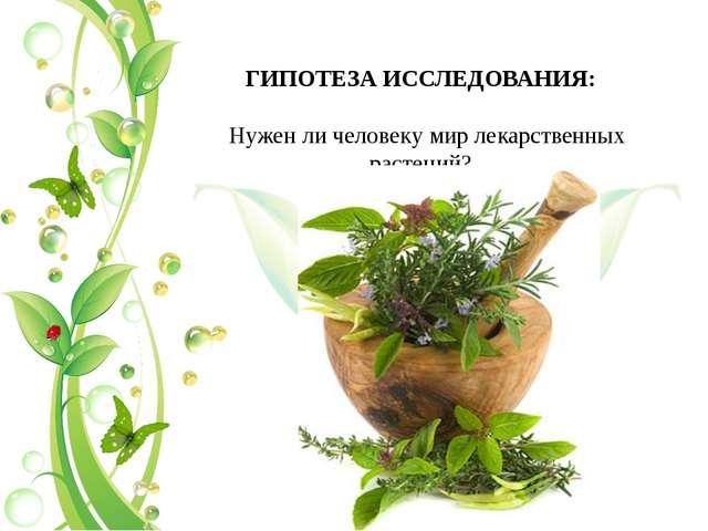 ГИПОТЕЗА ИССЛЕДОВАНИЯ: Нужен ли человеку мир лекарственных растений?
