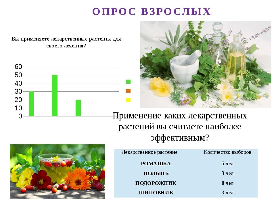 Вы применяете лекарственные растения для своего лечения? Применение каких лек...