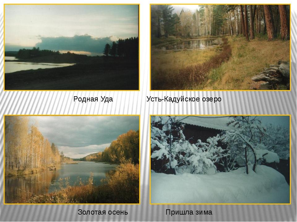 Родная УдаУсть-Кадуйское озеро Золотая осеньПришла зима