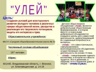Образовательное учреждение: МБОУ «Средняя общеобразовательная школа № 3» Адре