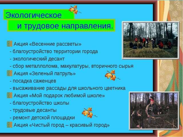 Акция «Весенние рассветы» - благоустройство территории города - экологически...