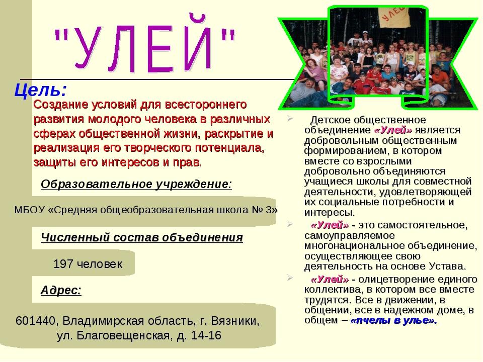 Образовательное учреждение: МБОУ «Средняя общеобразовательная школа № 3» Адре...