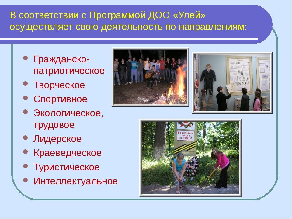 В соответствии с Программой ДОО «Улей» осуществляет свою деятельность по напр...