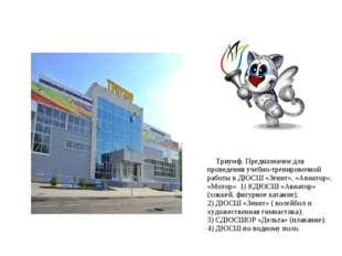 Триумф. Предназначен для проведения учебно-тренировочной работы в ДЮСШ «Зени