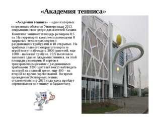 «Академия тенниса» «Академия тенниса» – один из первых спортивных объектов У