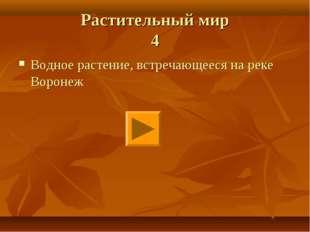 Растительный мир 4 Водное растение, встречающееся на реке Воронеж