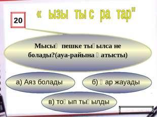 в) тоңып тығылды б) Қар жауады а) Аяз болады 20 Мысық пешке тығылса не болады