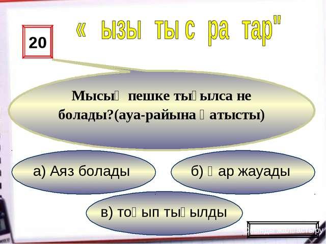 в) тоңып тығылды б) Қар жауады а) Аяз болады 20 Мысық пешке тығылса не болады...