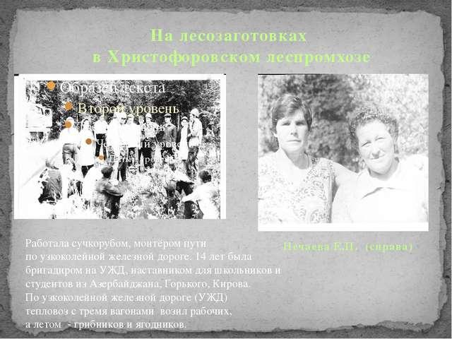 На лесозаготовках в Христофоровском леспромхозе Нечаева Е.П. (справа) Работа...