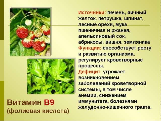 Источники: печень, яичный желток, петрушка, шпинат, лесные орехи, мука пшенич...