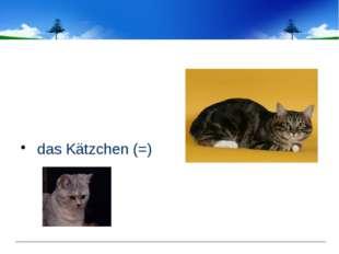 das Kätzchen (=)