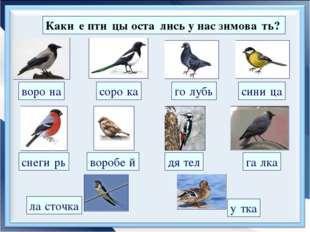 Каки́е пти́цы оста́лись у нас зимова́ть? воро́на соро́ка сини́ца воробе́й го́