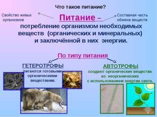 Питание – потребление организмом необходимых веществ (органических и минерал